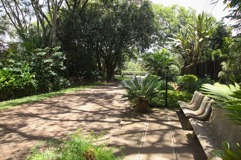 Lake View Cottage Garden